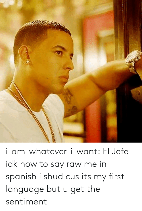 El Jefe: i-am-whatever-i-want:  El Jefe   idk how to say raw me in spanish i shud cus its my first language but u get the sentiment