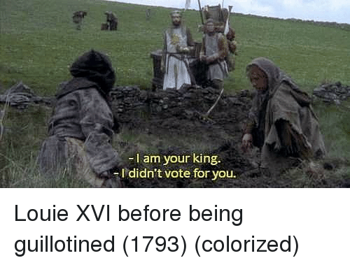 Louie: -I am your king.  I didn't vote for you. Louie XVI before being guillotined (1793) (colorized)