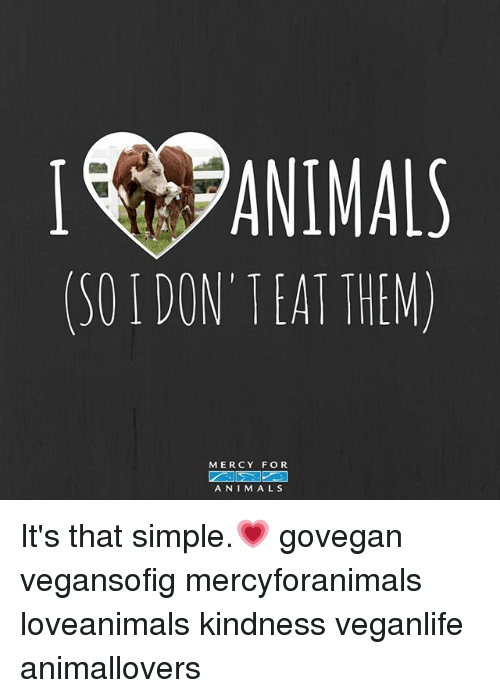 Kindness: I ANIMALS  (50 DON'TEAT THEM)  MERCY FOR  ANIMALS It's that simple.💗 govegan vegansofig mercyforanimals loveanimals kindness veganlife animallovers