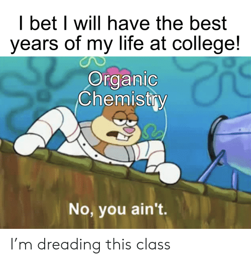organic chemistry: I bet I will have the best  years of my life at college!  Organic  Chemistry  No, you ain't. I'm dreading this class