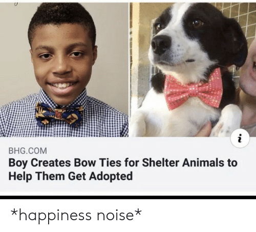 Ties: i  BHG.COM  Boy Creates Bow Ties for Shelter Animals to  Help Them Get Adopted *happiness noise*