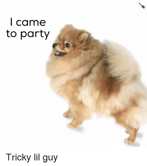 Party, Dank Memes, and I Came: I came  to party Tricky lil guy