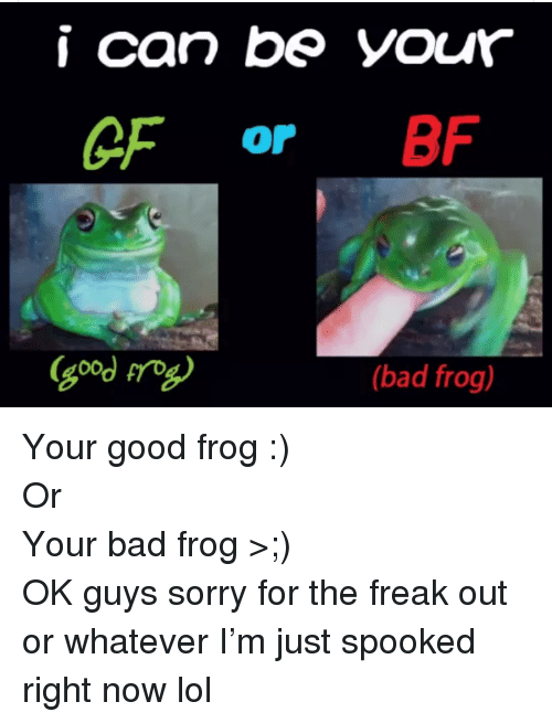 Spooked: i can be yOur  oF or BF  good og  (bad frog) <p>Your good frog :)<br/> Or<br/> Your bad frog &gt;;)<br/> OK guys sorry for the freak out or whatever I&rsquo;m just spooked right now lol</p>