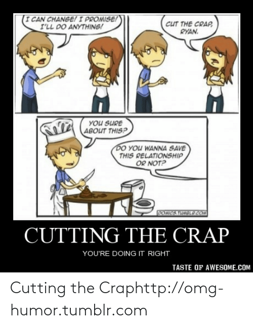 Youre Doing It Right: I CAN CHANGE! I PROMISE!  I'LL DO ANYTHING!  cuT THE CRAP,  RYAN.  YOU SURE  ABOUT THIS?  DO YOU WANNA SAVE  THIS RELATIONSHIP  OR NOT?  DOMICS TUMBLP COM  CUTTING THE CRAP  YOU'RE DOING IT RIGHT  TASTE OF AWESOME.COM Cutting the Craphttp://omg-humor.tumblr.com