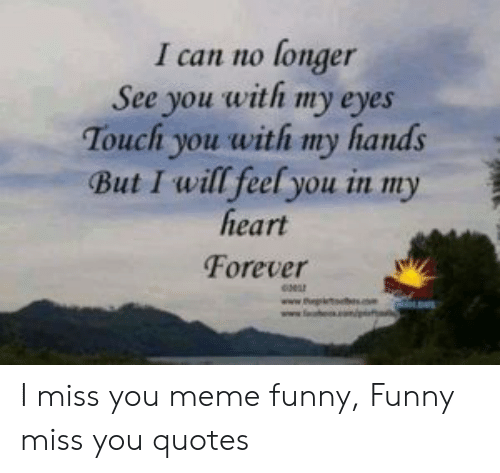 i miss you meme: I can no longer  See you with my eyes  Touchi you with my hands  But I will feel you in my  heart  Forever I miss you meme funny, Funny miss you quotes