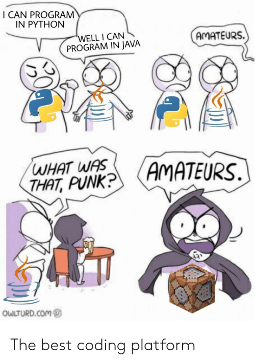 Best, Java, and Python: I CAN PROGRAM  IN PYTHON  'WELL I CAN  PROGRAM IN JAVA  AMATEURS.  WHAT WAS  THAT, PUNK?  (AMATEURS.  OWLTURD.COM The best coding platform