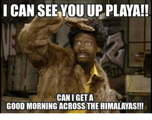Good Morning I M Up Meme : I can seeyou up playa canigeta good morning across the