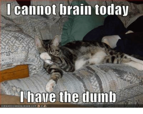 I Have The Dumb: I cannot brain today  I have the dumb