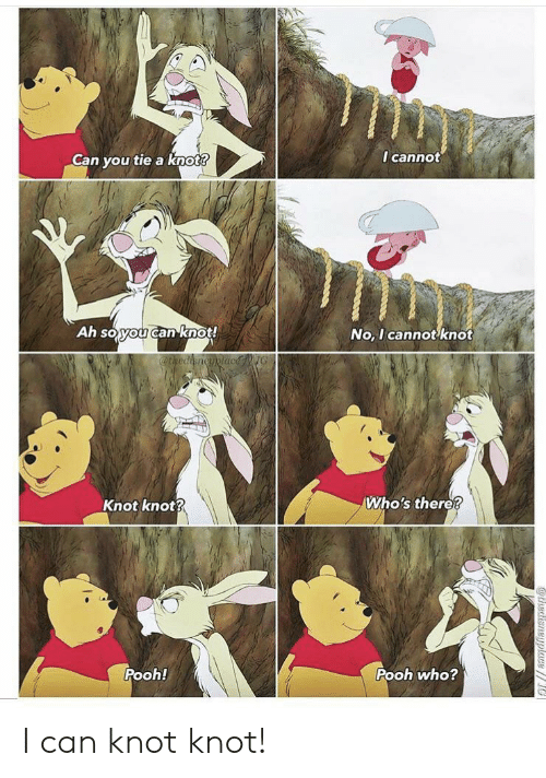 Knot: I cannot  Can you tie a knot?  Ah soyou canknot!  No, I cannot knot  @thediencyplacNG  Who's there?  Knot knot?  Pooh!  Pooh who?  athedisneyplace// I can knot knot!