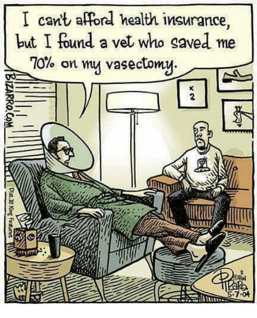 Memes, Health Insurance, and Vasectomy: I cant afford health insurance  but I found a vet who gaved me  on my vasectomy.  Tolo 5.7.04