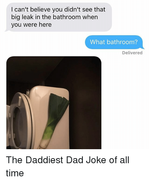 Dads Jokes: I can't believe you didn't see that  big leak in the bathroom when  you were here  What bathroom?  Delivered The Daddiest Dad Joke of all time