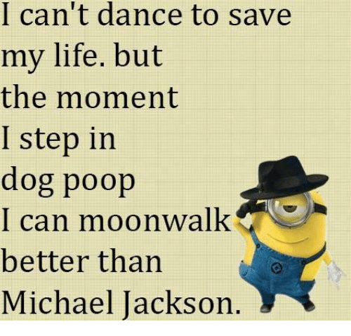Funny Can T Dance Meme : I can t dance to save my life but the moment step in dog