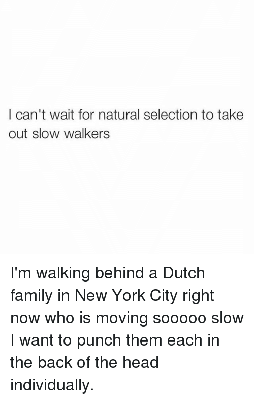 Family, Head, and Memes: I can't wait for natural selection to take  out slow walkers I'm walking behind a Dutch family in New York City right now who is moving sooooo slow I want to punch them each in the back of the head individually.