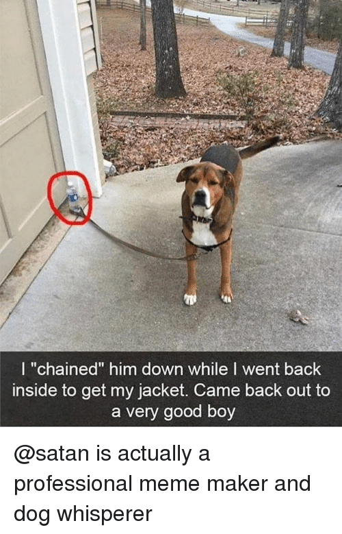"""meme maker: I """"chained"""" him down while I went back  inside to get my jacket. Came back out to  a very good boy @satan is actually a professional meme maker and dog whisperer"""