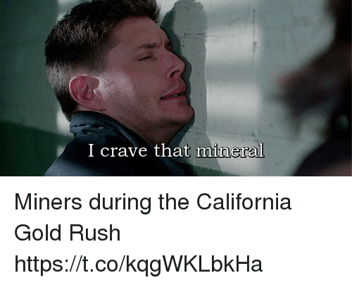 gold rush: I crave that mineral Miners during the California Gold Rush https://t.co/kqgWKLbkHa