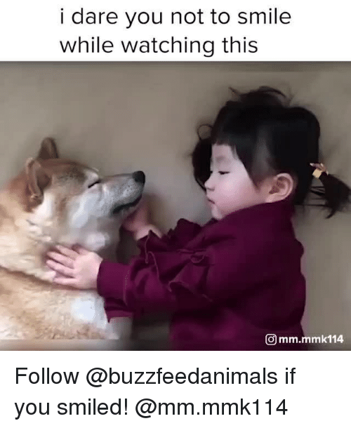 Smile, Relatable, and Dare: i dare you not to smile  while watching this  Omm.mmk114 Follow @buzzfeedanimals if you smiled! @mm.mmk114