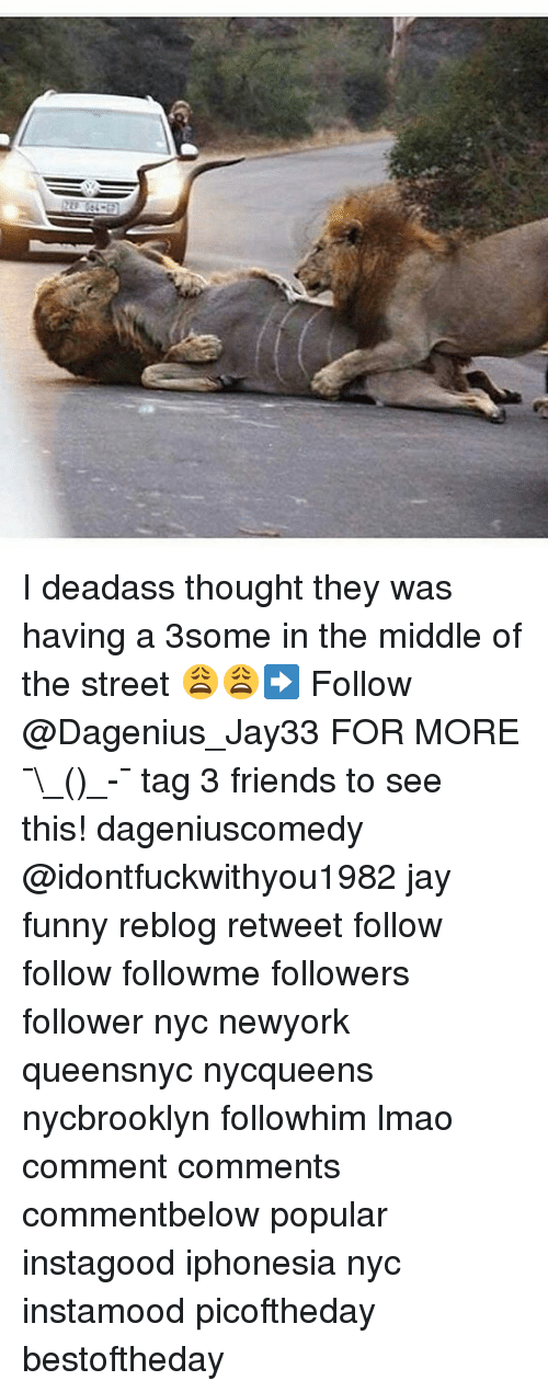 Friends, Funny, and Jay: I deadass thought they was having a 3some in the middle of the street 😩😩➡️ Follow @Dagenius_Jay33 FOR MORE ¯\_(ツ)_-¯ tag 3 friends to see this! dageniuscomedy @idontfuckwithyou1982 jay funny reblog retweet follow follow followme followers follower nyc newyork queensnyc nycqueens nycbrooklyn followhim lmao comment comments commentbelow popular instagood iphonesia nyc instamood picoftheday bestoftheday