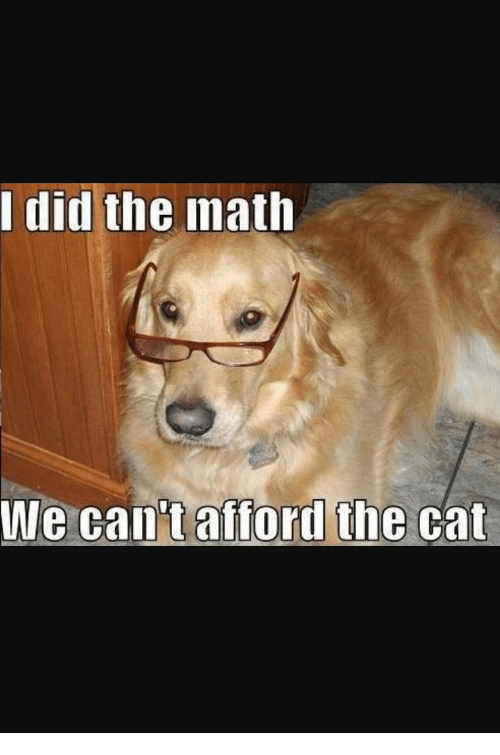I Did the Math We Can't Afford the Cat | Math Meme on SIZZLE