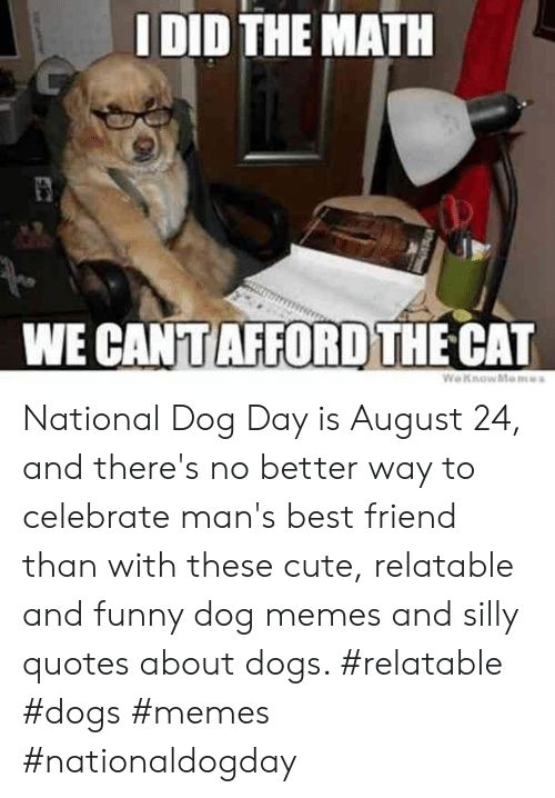 Silly Quotes: I DID THE MATH  WE CANTAFFORD THE CAT  WeKsowMemes National Dog Day is August 24, and there's no better way to celebrate man's best friend than with these cute, relatable and funny dog memes and silly quotes about dogs.  #relatable #dogs #memes #nationaldogday