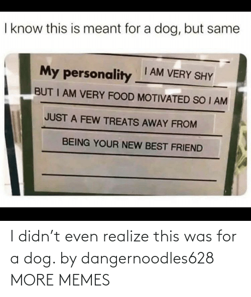 realize: I didn't even realize this was for a dog. by dangernoodles628 MORE MEMES