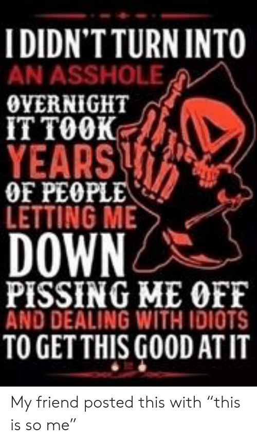 """Dealing With Idiots: I DIDN'TTURN INTO  AN ASSHOLE  OVERNIGHT  IT TOOK  YEARS  OF PEOPLE  LETTING ME  DOWN  PISSING ME OFF  AND DEALING WITH IDIOTS  TO GETTHIS GOOD ATIT My friend posted this with """"this is so me"""""""