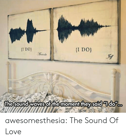 Waves: I DO  I DO  Aamanda  The sound waves ofthe moment they safddo awesomesthesia:  The Sound Of Love