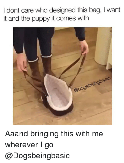 Girl Memes: I dont care who designed this bag, I want  it and the puppy it comes with  adogsbemgoase Aaand bringing this with me wherever I go @Dogsbeingbasic