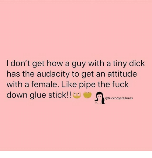Audacity, Dick, and Fuck: I don't get how a guy with a tiny dick  has the audacity to get an attitude  with a female. Like pipe the fuck  down glue stick!!  fuckboysfailures