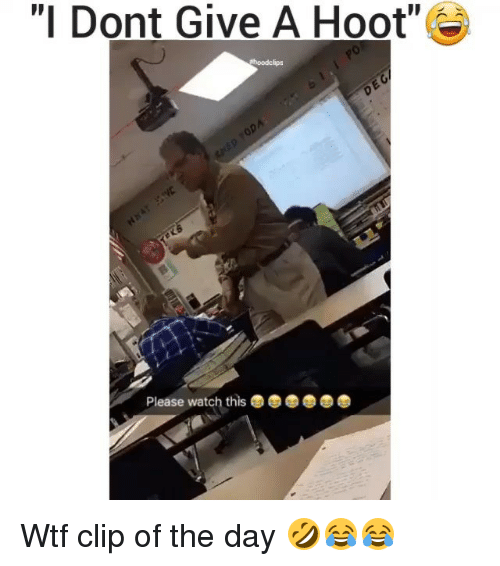"""Funny, Wtf, and Watch: """"I Dont Give A Hoot""""  Please watch this Wtf clip of the day 🤣😂😂"""