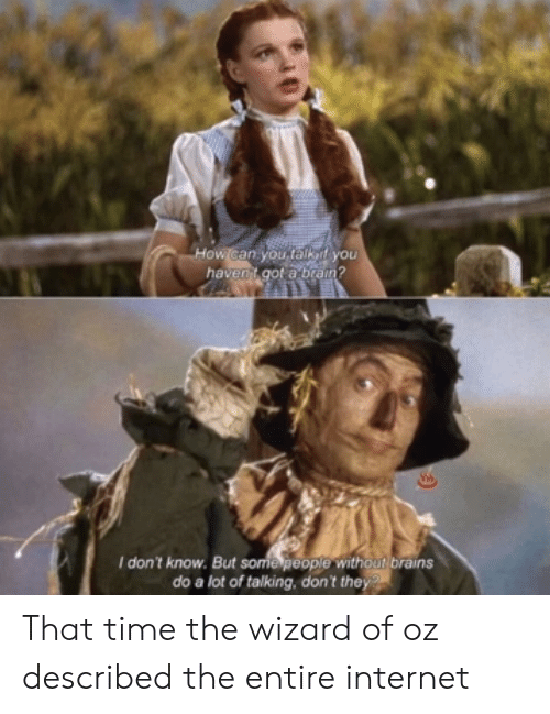 Wizard of Oz: I don't know. But some people without brains  do a lot of talking, don't they That time the wizard of oz described the entire internet