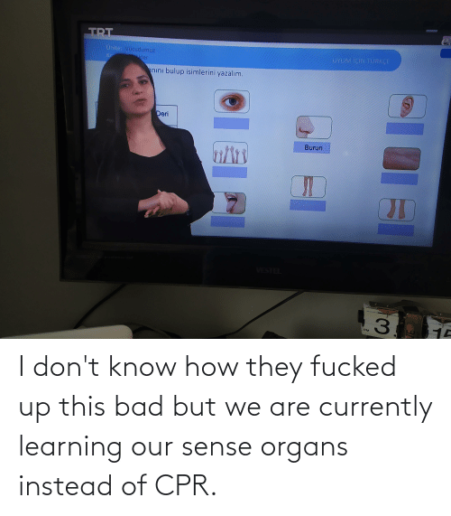 cpr: I don't know how they fucked up this bad but we are currently learning our sense organs instead of CPR.
