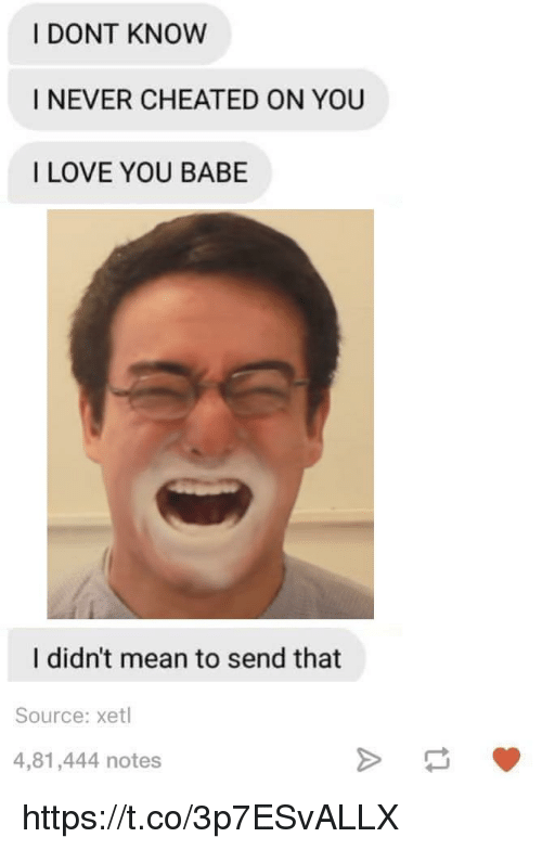 i love you babe: I DONT KNOW  I NEVER CHEATED ON YOU  I LOVE YOU BABE  I didn't mean to send that  Source: xetl  4,81,444 notes https://t.co/3p7ESvALLX