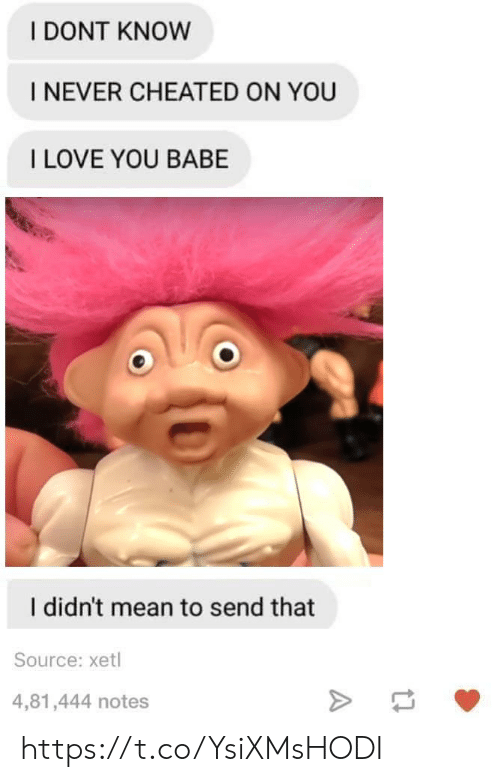 i love you babe: I DONT KNOW  I NEVER CHEATED ON YOU  I LOVE YOU BABE  I didn't mean to send that  Source: xetl  4,81,444 notes https://t.co/YsiXMsHODI