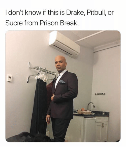 Drake, Pitbull, and Prison: I don't know if this is Drake, Pitbull, or  Sucre from Prison Break.