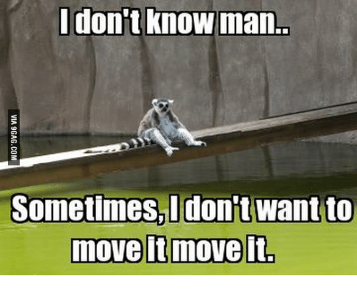 I Love Gold Meme: I don't know man.  Sometimes I don't want to  move itmoveit.