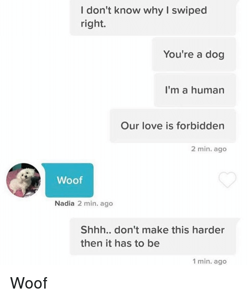 Funny, Dog, and Human: I don't know why I swiped  right.  You're a dog  I'm a human  Our love is forbidden  2 min. ago  Woof  Nadia  2 min. ago  Shhh.. don't make this harder  then it has to be  1 min. ago Woof