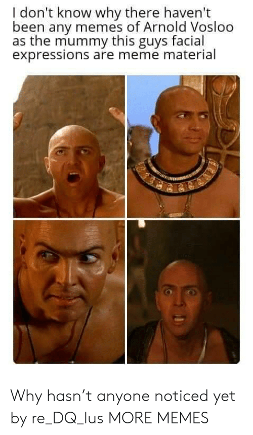 mummy: I don't know why there haven't  been any memes of Arnold Vosloo  as the mummy this guys facial  expressions are meme material Why hasn't anyone noticed yet by re_DQ_lus MORE MEMES
