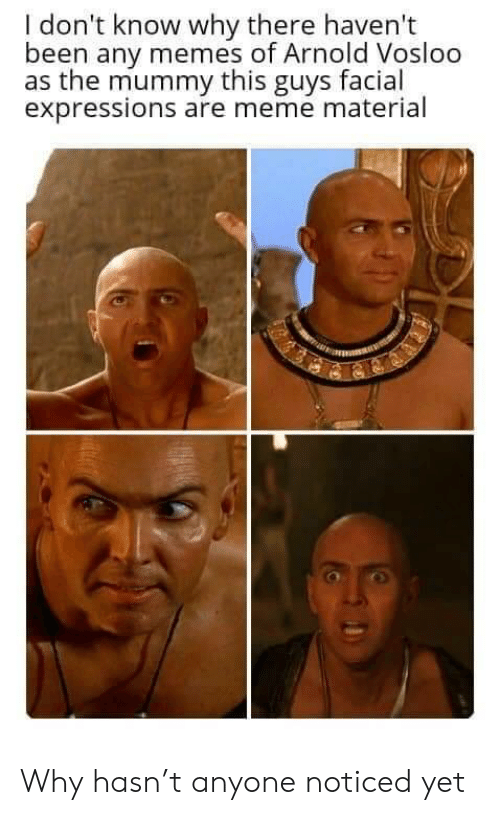 mummy: I don't know why there haven't  been any memes of Arnold Vosloo  as the mummy this guys facial  expressions are meme material Why hasn't anyone noticed yet