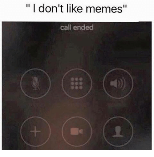 "Memes, Call Ended, and 🤖: I don't like memes""  call ended"