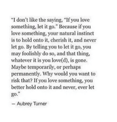 """aubrey: """"I don't like the saying, """"If you love  something, let it go."""" Because if you  love something, your natural instinct  is to hold onto it, cherish it, and never  let go. By telling you to let it go, you  may foolishly do so, and that thing,  whatever it is you love(d), is gone.  Maybe temporarily, or perhaps  permanently. Why would you want to  risk that? If you love something, you  better hold onto it and never, ever let  go.  - Aubrey Turner"""