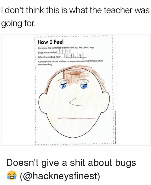 what you eat dont make me shit 25 best memes about bugs ...