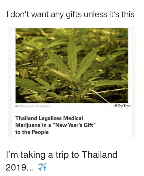 """Thailand: I don't want any gifts unless it's this  Getty Images/Ethan Miller  @TopTree  Thailand Legalizes Medical  Marijuana in a """"New Year's Gift""""  to the People I'm taking a trip to Thailand 2019... ✈️"""