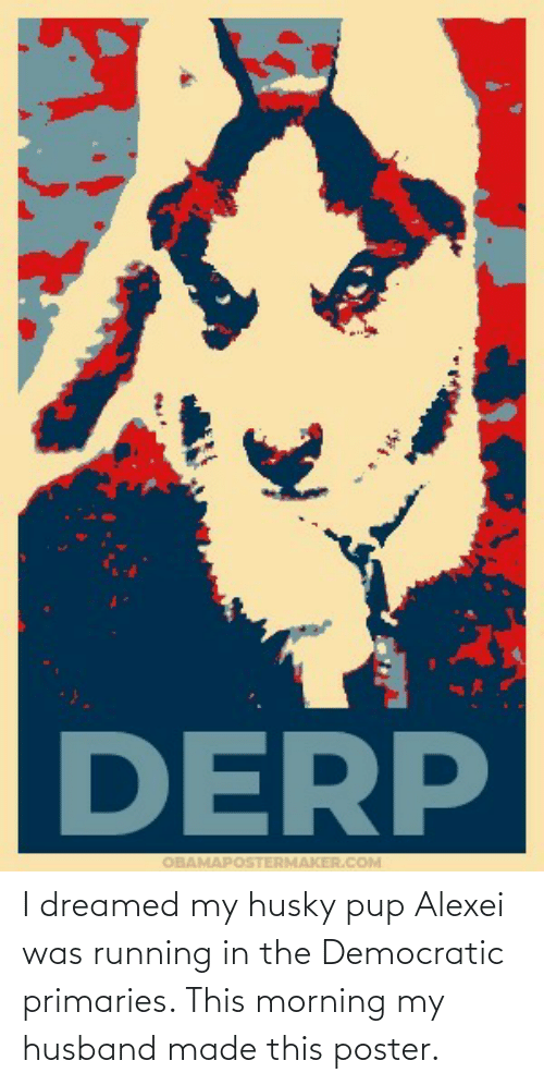 Running In The: I dreamed my husky pup Alexei was running in the Democratic primaries. This morning my husband made this poster.