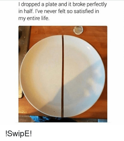 plated: I dropped a plate and it broke perfectly  in half. I've never felt so satisfied in  my entire life. !SwipE!