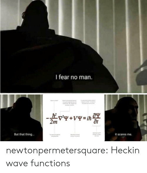 Heckin: I fear no man.  Ot  But that thing.  it scares me. newtonpermetersquare:  Heckin wave functions