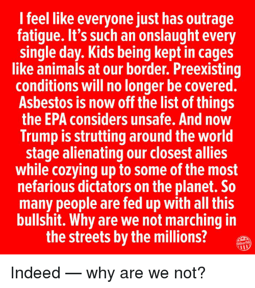Animals, Memes, and Streets: I feel like everyone just has outrage  fatigue. It's such an onslaught every  single day. Kids being kept in cages  like animals at our border. Preexisting  conditions will no longer be covered.  Asbestos is now off the list of things  the EPA considers unsafe. And now  Trump is strutting around the world  stage alienating our closest allies  while cozying up to some of the most  nefarious dictators on the planet. So  many people are fed up with all this  bullshit. Why are we not marching in  the streets by the millions?  Other98  IL Indeed — why are we not?