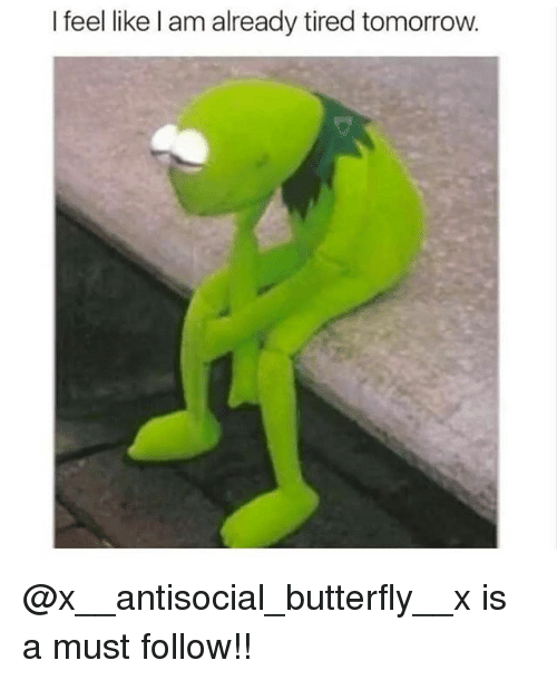 Memes, Butterfly, and Tomorrow: I feel like l am already tired tomorrow. @x__antisocial_butterfly__x is a must follow!!