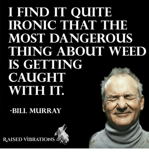 Vibraters: I FIND IT QUITE  IRONIC THAT THE  MOST DANGEROUS  THING ABOUT WEED  IS GETTING  CAUGHT  WITH IT.  BILL MURRAY  RAISED VIBRATIONS