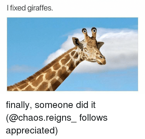 Memes, 🤖, and Did: I fixed giraffes. finally, someone did it (@chaos.reigns_ follows appreciated)