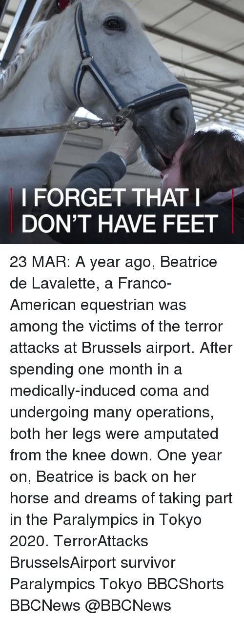 Memes, 🤖, and Feet: I FORGET THAT I  DON'T HAVE FEET 23 MAR: A year ago, Beatrice de Lavalette, a Franco-American equestrian was among the victims of the terror attacks at Brussels airport. After spending one month in a medically-induced coma and undergoing many operations, both her legs were amputated from the knee down. One year on, Beatrice is back on her horse and dreams of taking part in the Paralympics in Tokyo 2020. TerrorAttacks BrusselsAirport survivor Paralympics Tokyo BBCShorts BBCNews @BBCNews